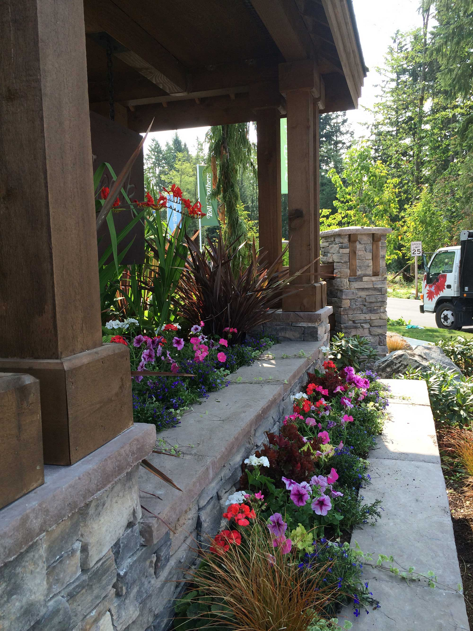 commercial-projects-seasonal-color-3