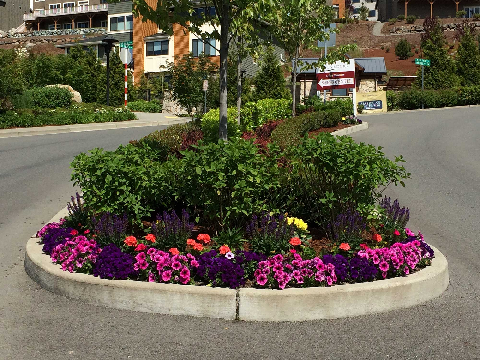 commercial-projects-seasonal-color-6