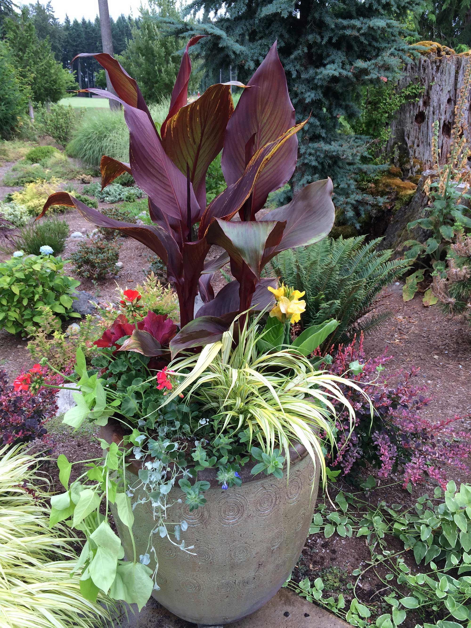 commercial-projects-seasonal-color-9