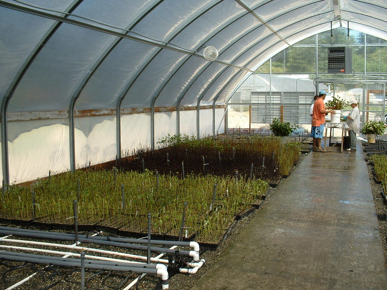 inhouse nursery WA